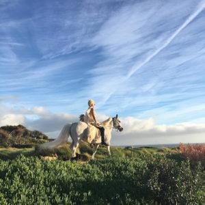 lady-gaga-horse-2016